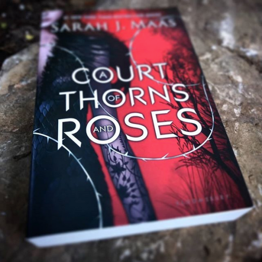 "A red and black book with silver text on it. On the left side of the book a young woman in a black dress stands, a black flowering tattoo on her arm. The text reads ""A Court of Thorns and Roses"" by Sarah J. Maas"